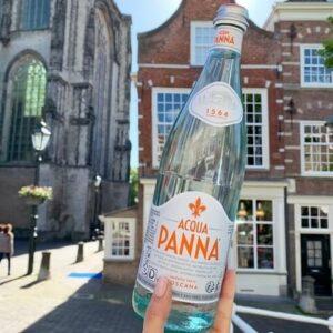 Acqua Panna 0,75cl